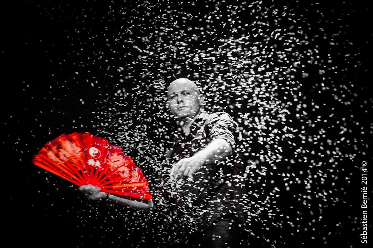 Magicien axel lupin arbre de noel ce magie spectacle enfant grande illusion 1